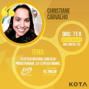 Curso Christiane Carvalho