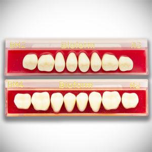 Dente Bioform – Vipi