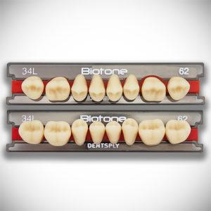 Dente Biotone – Dentsply